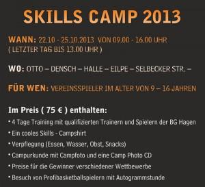 DINlang_Skills_Camp_back2_web